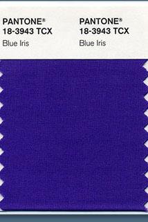 bleu-iris-pantone.jpg