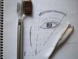 sourcils-dessin.jpg