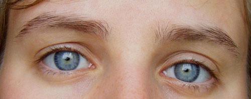 flux-sourcils