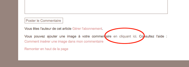 image-commentaires-5